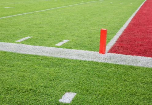 Turf Wars Pros And Cons Of Artificial Turf Momsteam